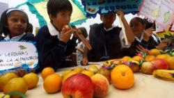 Alimentación saludable para una buena salud